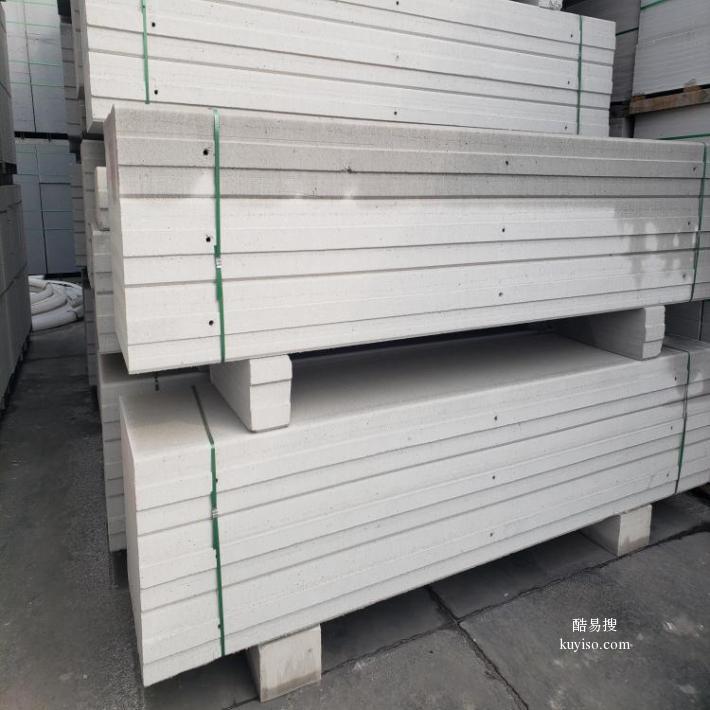 陕西 轻质砖 B06蒸压加气块 ALC板材产品图